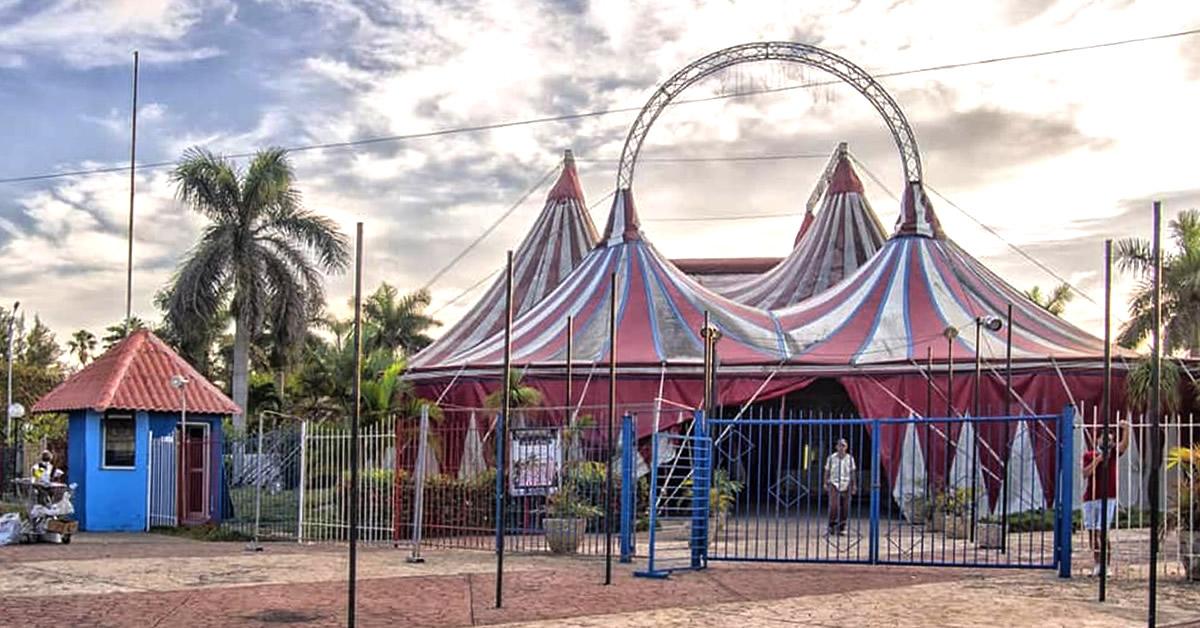 ¡100 Pesos una butaca! El circo en Cuba también aumenta el precio de sus entradas